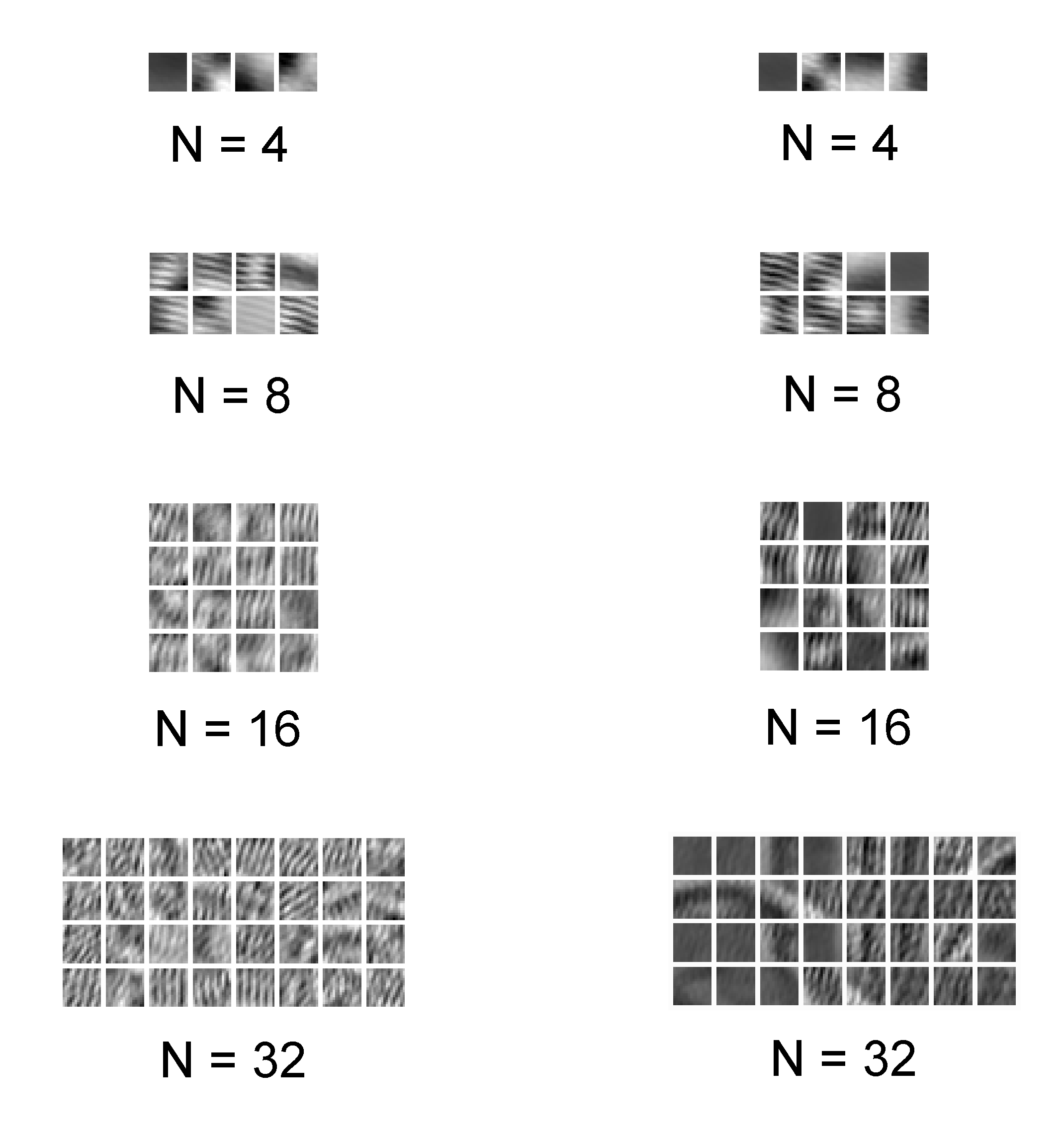 Sparse coding of the Barbara image